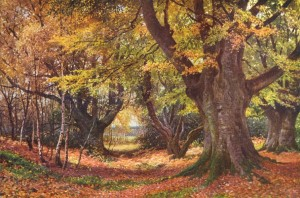 surrey-beeches-in-autumn-godalming-vintage-print-1912-58663-p