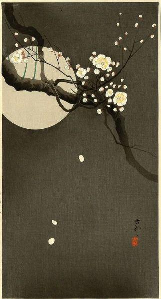 78a9ff100514e55ed5144e1e4f7dfce9--japanese-patterns-japanese-prints